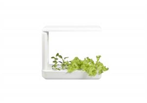 Indoor Gardening K-Box System mit 12 Pflanzmöglichkeiten