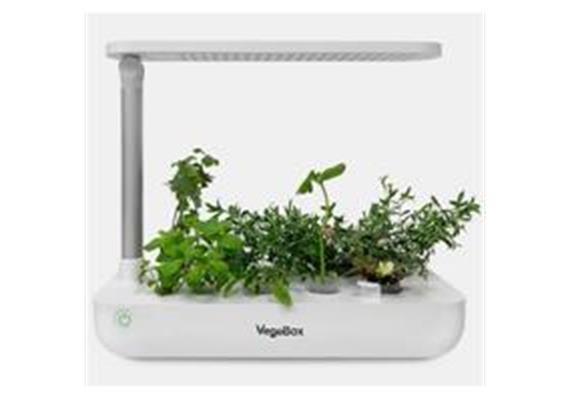 Indoor Gardening T-Box System mit 9 Pflanzmöglichkeiten